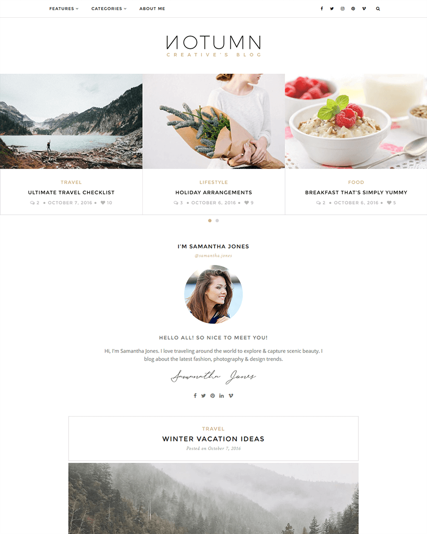 20+ Best Minimalist WordPress Themes