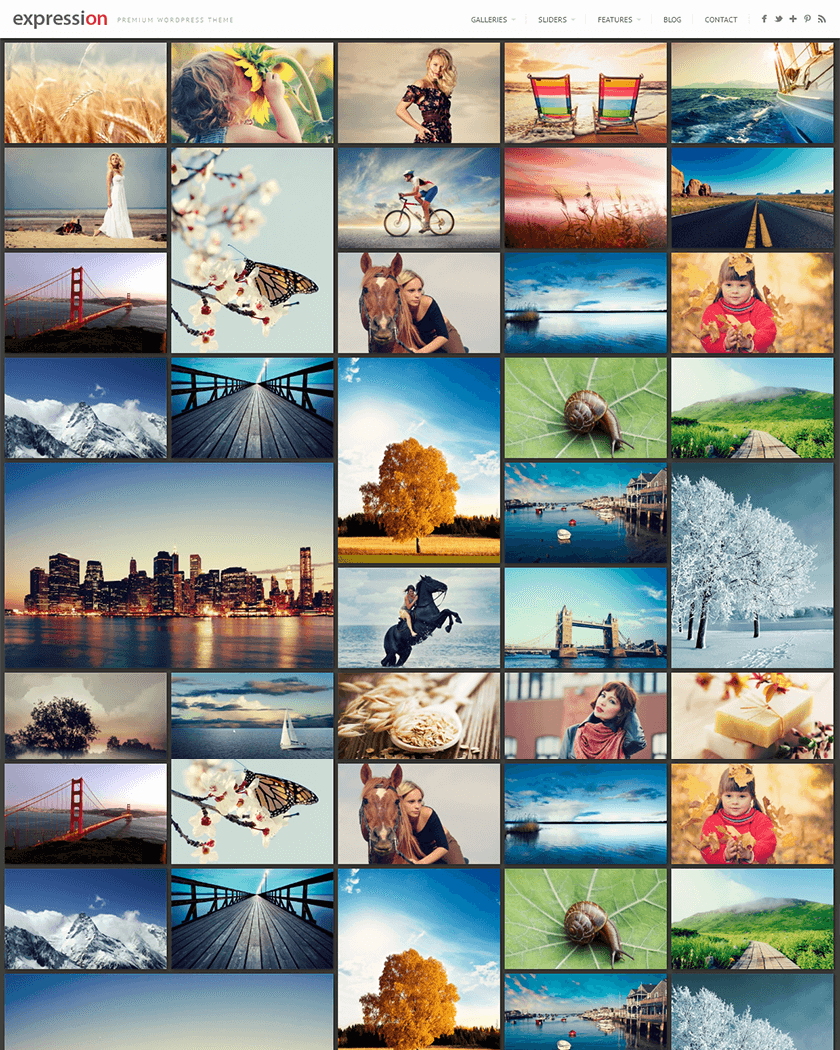 Expression Photography Theme