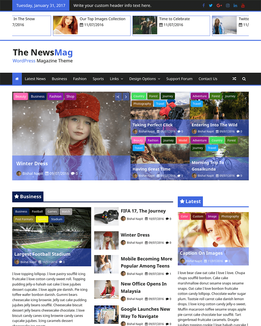 The NewsMag Theme